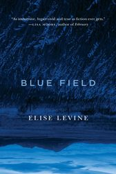 Blue Field by Elise Levine