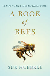 A Book of Bees by Sam Potthoff