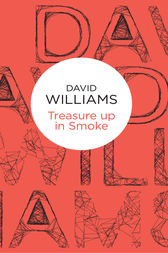 Treasure Up in Smoke by David Williams