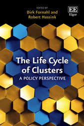 The Life Cycle of Clusters: A Policy Perspective