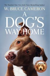 A Dog's Way Home: The Heartwarming Story of the Special Bond Between Man and Dog