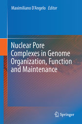 Nuclear Pore Complexes in Genome Organization, Function and Maintenance by Maximiliano D'Angelo